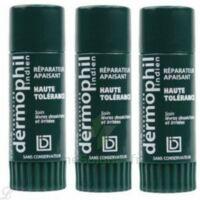 Dermophil indien haute tolérance stick lèvres lot de 2 + 1 offert à PODENSAC