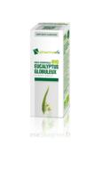 Huile essentielle Bio Eucalyptus Globuleux  à PODENSAC